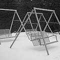 Snow Swings by Rodney Lee Williams