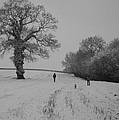 Snow Walkers by Pete Abbott