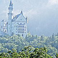 Snow White's Palace In Morning Mist by Elvis Vaughn