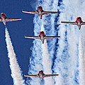 Snowbirds 2014 by Randy Hall