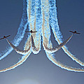 Snowbirds In A Dive by Randy Hall