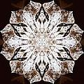 Snowbound by Derek Gedney