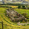 Snowdon Ruin by Adrian Evans