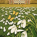 Snowdrop Day, Hatfield House by Frances Broomfield