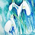 Snowdrops by Ruth Harris