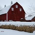 Snowed In Barn by Bruce Nutting