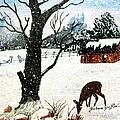 Snowfall And Visiting Doe by Barbara Griffin