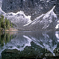 Snowfield Reflection On Blue Lake  by Tracy Knauer
