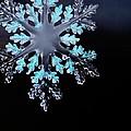 Snowflake In Window 20471 by Jerry Sodorff