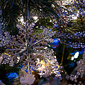 Snowflake On The Tree by Joanne Smoley
