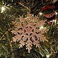 Snowflake Ornament by Cynthia Woods