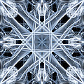 Snowflake by Steve Purnell