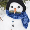 Snowman by Dan Radi