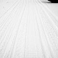 snowmobile tracks in the snow Kamsack Saskatchewan Canada by Joe Fox