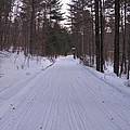 Snowmobile Trail by Nancie Johnson
