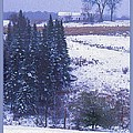 Snow's Arrival by Joy Nichols
