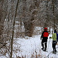 Snowshoeing In The Park by Kay Novy