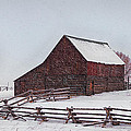 Snowstorm At The Ranch by Priscilla Burgers