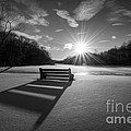 Snowy Bench Bw by Michael Ver Sprill