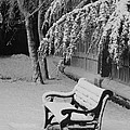 Snowy Bench by Heather Gordon