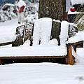 Snowy Bench by Sonja Dover