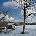 Snowy Bog House by David DeCenzo