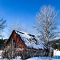 Snowy Cabin by Robert Bales