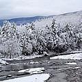 Snowy Catskill Creek  by Judy Genovese