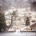 Snowy Cemetery by Tracy Brock