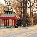 Snowy Chinese Shelter by Scott Rackers
