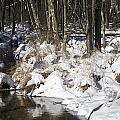 Snowy Creek by Cheryl Gayser