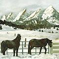Snowy Day by Anne Gifford
