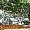 Snowy Day At The Cemetery - Greensboro North Carolina by Dan Carmichael