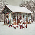 Snowy Day by David and Carol Kelly