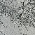 Snowy Day by Elizabeth Winter