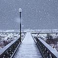 Snowy Day On The Boardwalk by Stanza Widen