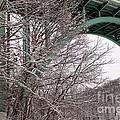 Snowy Drive by Wendy Gertz