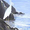 Snowy Egret by Bill Holkham