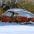 Snowy Fastback by Victor Montgomery