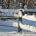 Snowy Fence by Jack Schultz