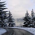 Snowy Gorge by Athena Mckinzie