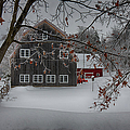 Snowy Grey And Red by Jeff Folger