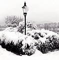 Snowy Lamp Post By The River Danube by Menega Sabidussi