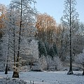 Winter Landscape by Christiane Schulze Art And Photography