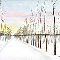 Snowy Lane by Arlene Crafton