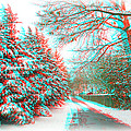 Snowy Lane - Use Red/cyan Filtered 3d Glasses by Brian Wallace