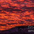 Snowy Mountain Sunset by Andrea Goodrich