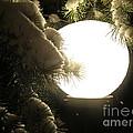 Snowy Night by Fiona Kennard