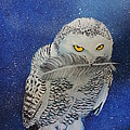 Snowy Owl by Terry Lewey