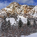 Snowy Ridge Above Bell Canyon - Wasatch Mountains - Utah by Gary Whitton